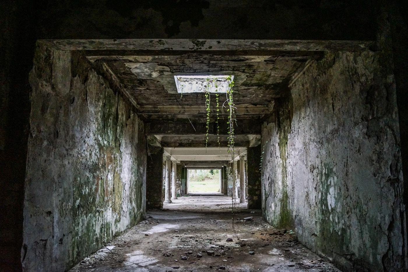 Zu sehen ist ein Gang, in einem verlassenen Sanatorium. Die Wände sind aschgrau bis schwarz und stellenweise mit Moos überzogen, durch einen Deckenlicht wächst eine Schlingpflanze nach unten, weiter hinten sind Säulen im klassischen Stil zu erkennen, dahinter ist ein Ausgang.