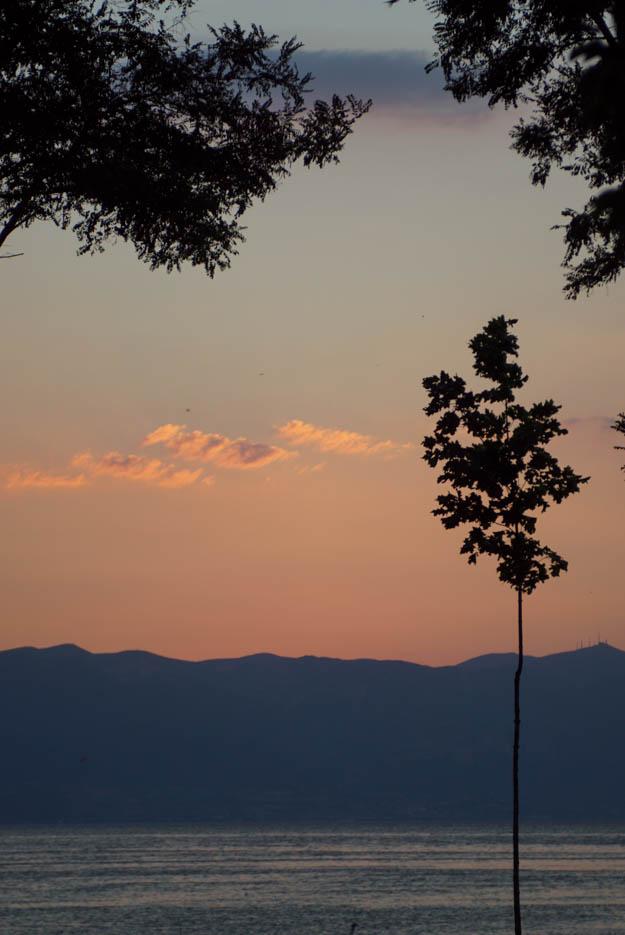 Die Sonne ist untergegangen über dem Ohridsee, man sieht drei einzelne orange gefärbte Wolken am Himmel dahinter zeichnen sich die schwarzen Berge ab. Im Vordergrund steht ein kleiner sehr schmaler Baum