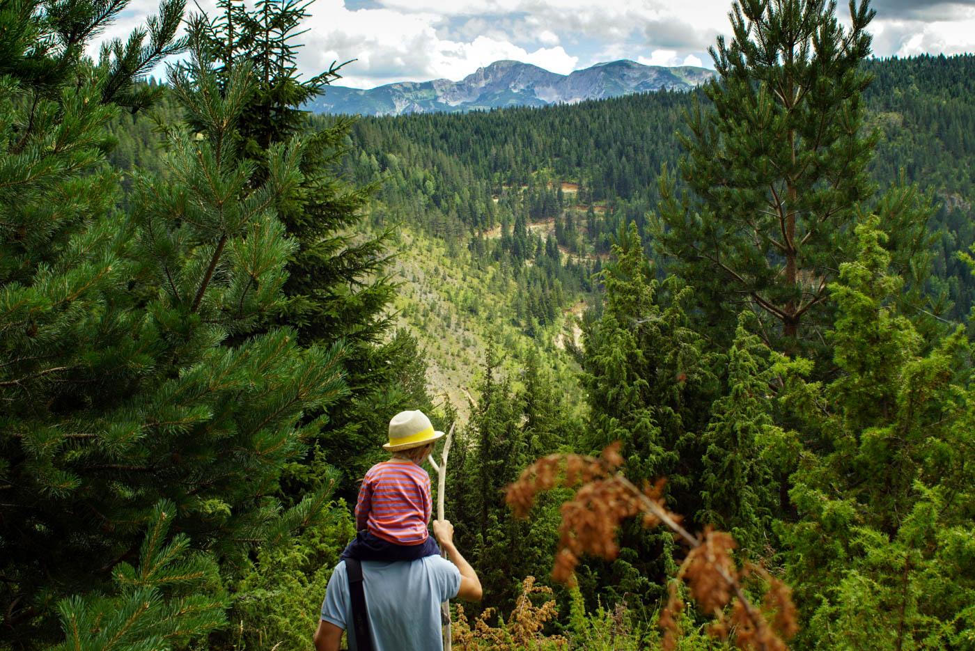 Im Vordergrund stehe ich zwischen niedrigen Bäumen mit Luke auf der Schulter und blicke hinaus in die bewaldete Rugova Schlucht im Hintergrund erheben sich Berge die über der Baumgrenze liegen.
