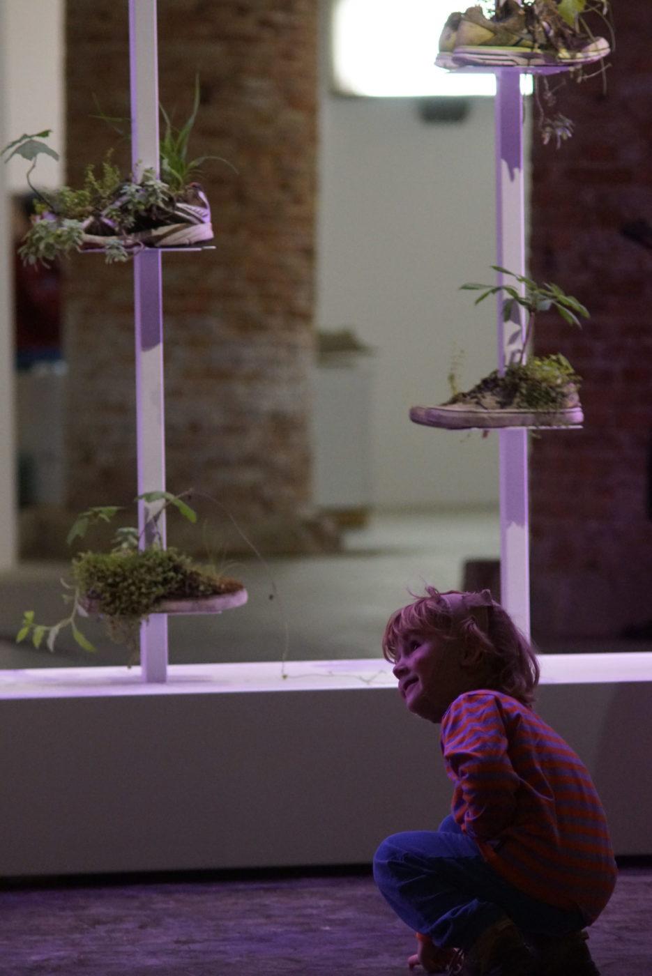 Luk sitzt in der Hocke und betrachte von unten vier Turnschuhe die an zwei einsen Stangen befestigt sind und aus denen Moos und andere Pflanzen wachsen
